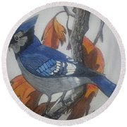 Blue Jay At Fall Round Beach Towel
