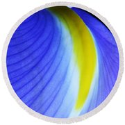 Round Beach Towel featuring the photograph Blue by Judy Whitton
