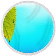 Blue Lagoon Round Beach Towel by Prakash Ghai