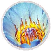 Blue Lotus Round Beach Towel