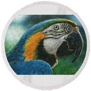 Blue Macaw Round Beach Towel
