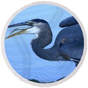 Blue Gulp Round Beach Towel