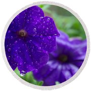 Blue Pansies After A Rain Round Beach Towel