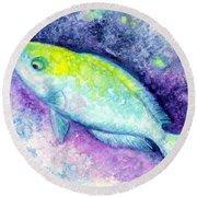 Blue Parrotfish Round Beach Towel