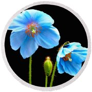 Blue Poppy Flowers # 4 Round Beach Towel