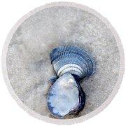 Blue Seashells Round Beach Towel