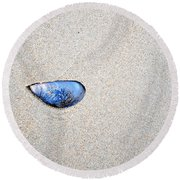 Round Beach Towel featuring the photograph Blue Shell by Randi Grace Nilsberg