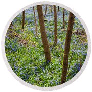 Blue Spring Flowers In Forest Round Beach Towel