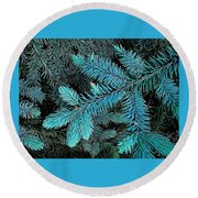 Round Beach Towel featuring the photograph Blue Spruce by Daniel Thompson