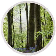 Bluebells In The Woods Round Beach Towel