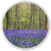 Bluebells Surrey England Uk Round Beach Towel