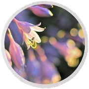 Bluebells Round Beach Towel by Tracy Male