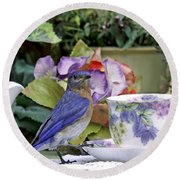 Bluebird And Tea Cups Round Beach Towel