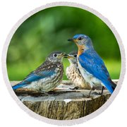 Bluebird - Father And Sons Round Beach Towel