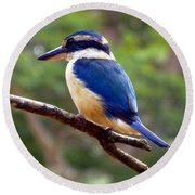 Bluebird In Suva Fiji Round Beach Towel