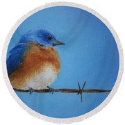 Bluebird On A Wire Round Beach Towel by Marna Edwards Flavell