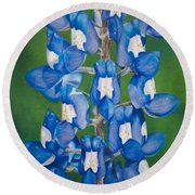 Bluebonnet Buffalo Clover Round Beach Towel