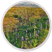 Bluebonnets And Creosote Bushes In Big Bend National Park-texas Round Beach Towel
