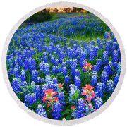 Bluebonnets Forever Round Beach Towel