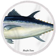 Bluefin Tuna Round Beach Towel by Charles Harden