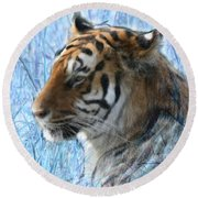 Bluegrass Tiger Round Beach Towel