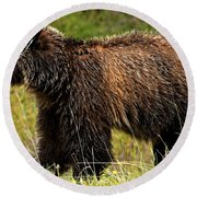 Bluetooth Grizzly 2 Round Beach Towel