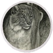 Bobcat Emerging Round Beach Towel