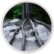 Round Beach Towel featuring the photograph Bones by David Andersen