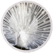 Round Beach Towel featuring the photograph Booya by Tammy Espino