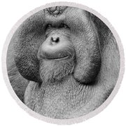 Bornean Orangutan IIi Round Beach Towel by Lourry Legarde