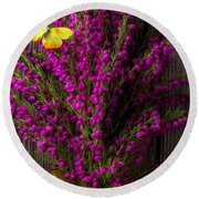 Boronia With Yellow Butterfly Round Beach Towel