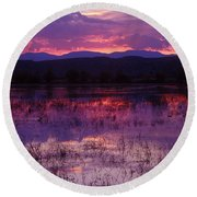 Bosque Sunset - Purple Round Beach Towel