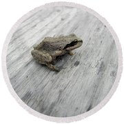 Botanical Gardens Tree Frog Round Beach Towel by Cheryl Hoyle