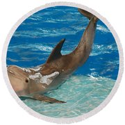 Bottlenose Dolphin Round Beach Towel by DejaVu Designs