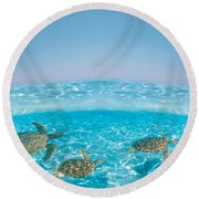 Bottlenose Dolphin Jumping While Round Beach Towel