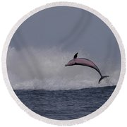Bottlenose Dolphin Photo Round Beach Towel
