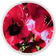 Round Beach Towel featuring the photograph Bottoms Up by Robyn King