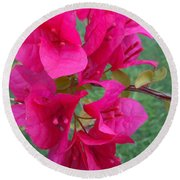 Bougainvillea Dream #2 Round Beach Towel by Robert ONeil