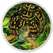 Box Turtle Round Beach Towel
