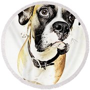 Round Beach Towel featuring the photograph Boxer Dog Poster by Peter v Quenter