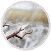 Round Beach Towel featuring the photograph Branches In Water by Randi Grace Nilsberg