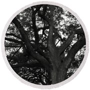 Branches Of Life Round Beach Towel