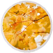 Branching Yellow Round Beach Towel by Melinda Ledsome
