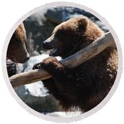Brawling Bears Round Beach Towel by DejaVu Designs