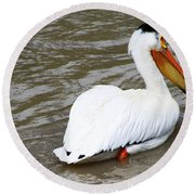 Round Beach Towel featuring the photograph Breeding Plumage by Alyce Taylor