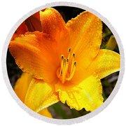 Bright Yellow Daylily Flower Round Beach Towel