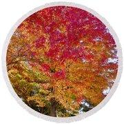 brilliant autumn colors on a Marblehead street Round Beach Towel