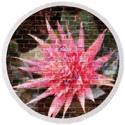 Round Beach Towel featuring the photograph Bromeliad On The Wall by Leanne Seymour
