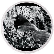 Round Beach Towel featuring the photograph Brother Raven by Susanne Still