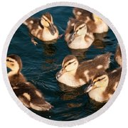 Brothers And Sisters Round Beach Towel